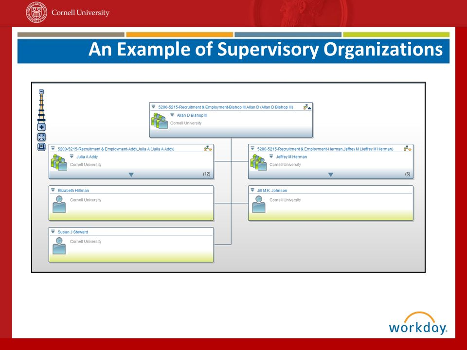 An Example of Supervisory Organizations