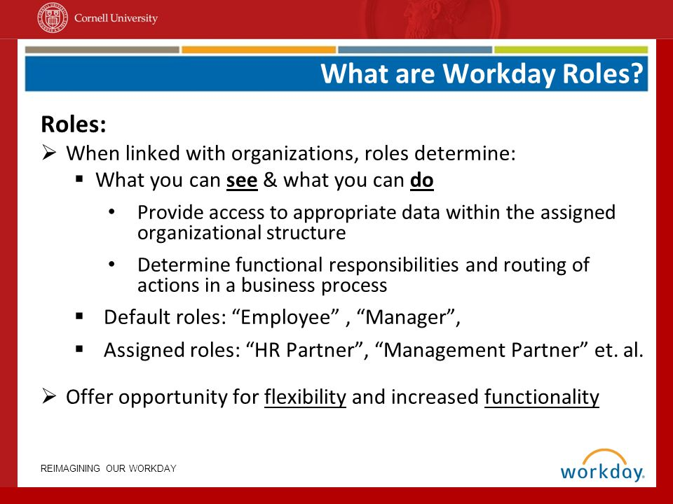 What are Workday Roles Roles: