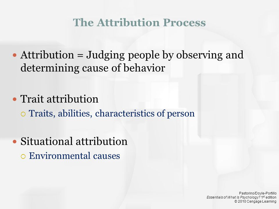 The Attribution Process