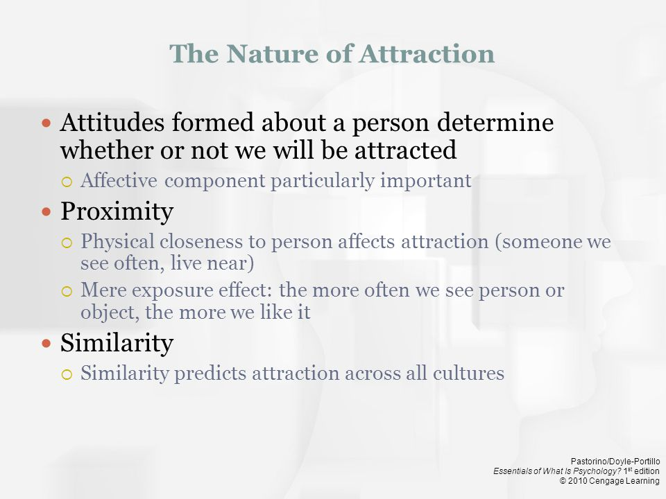 The Nature of Attraction