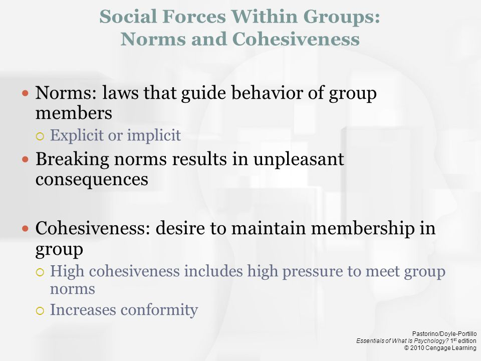 Social Forces Within Groups: Norms and Cohesiveness