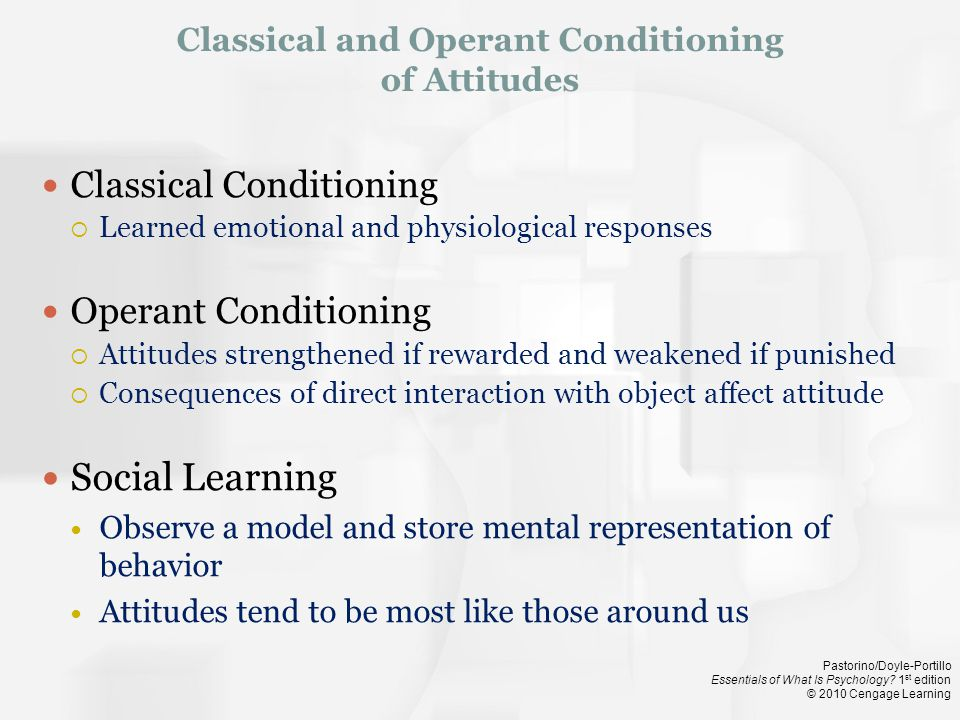 Classical and Operant Conditioning of Attitudes