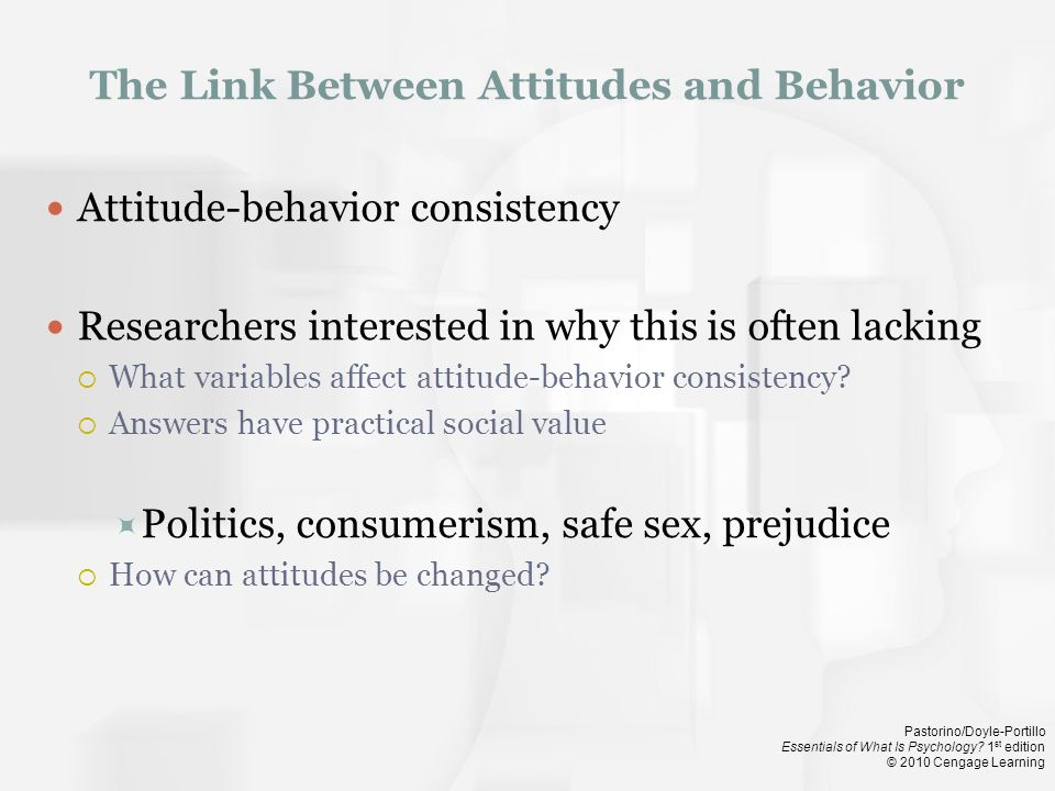The Link Between Attitudes and Behavior