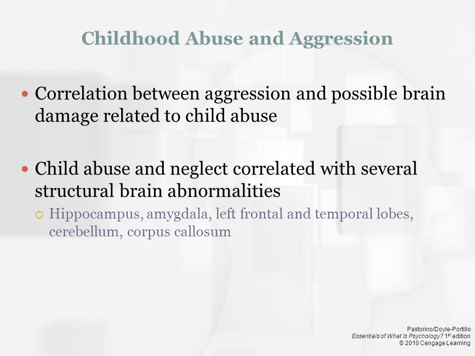 Childhood Abuse and Aggression