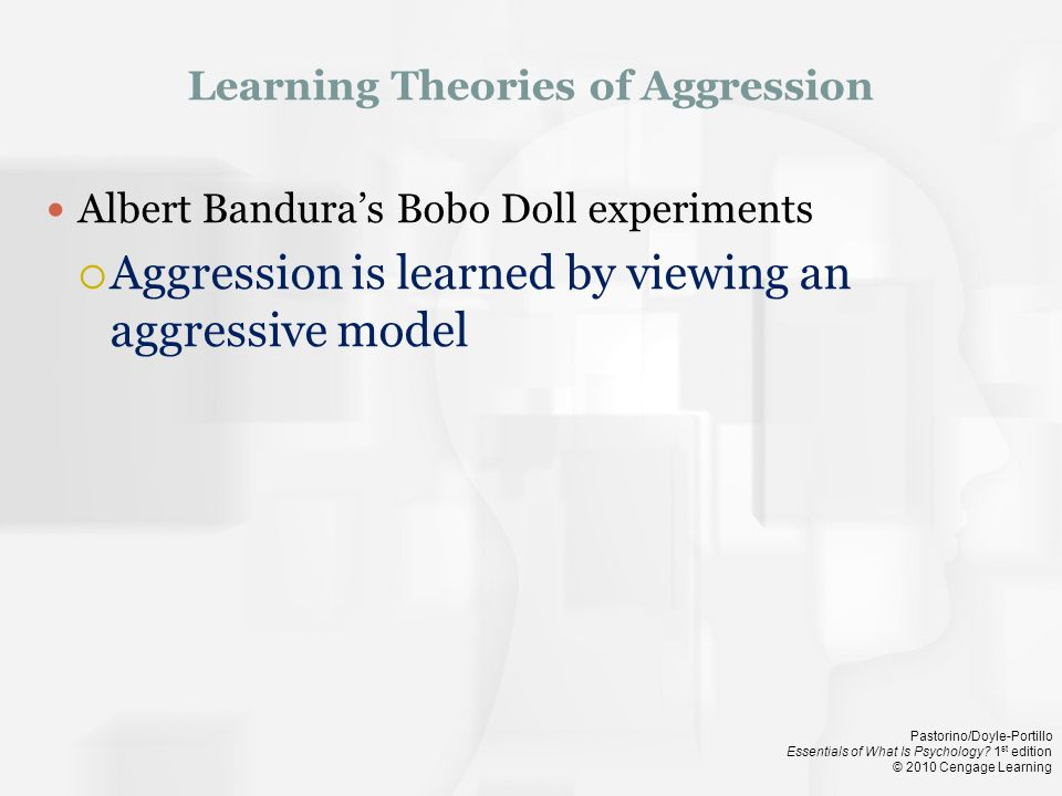Learning Theories of Aggression