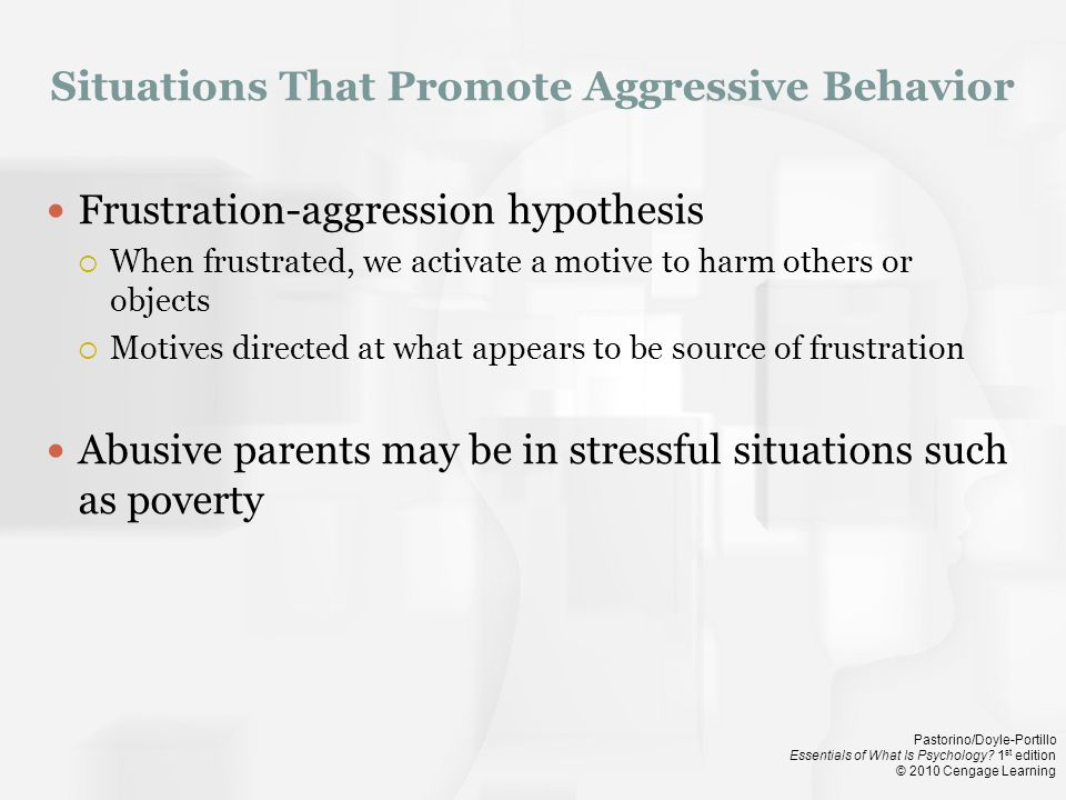 Situations That Promote Aggressive Behavior