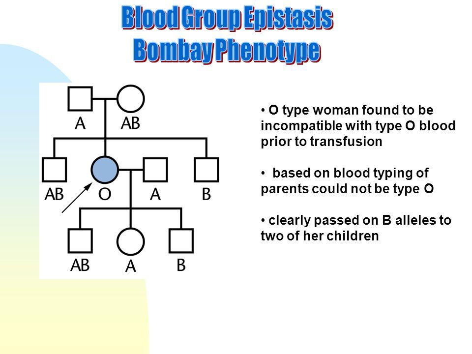 Blood Group Epistasis Bombay Phenotype