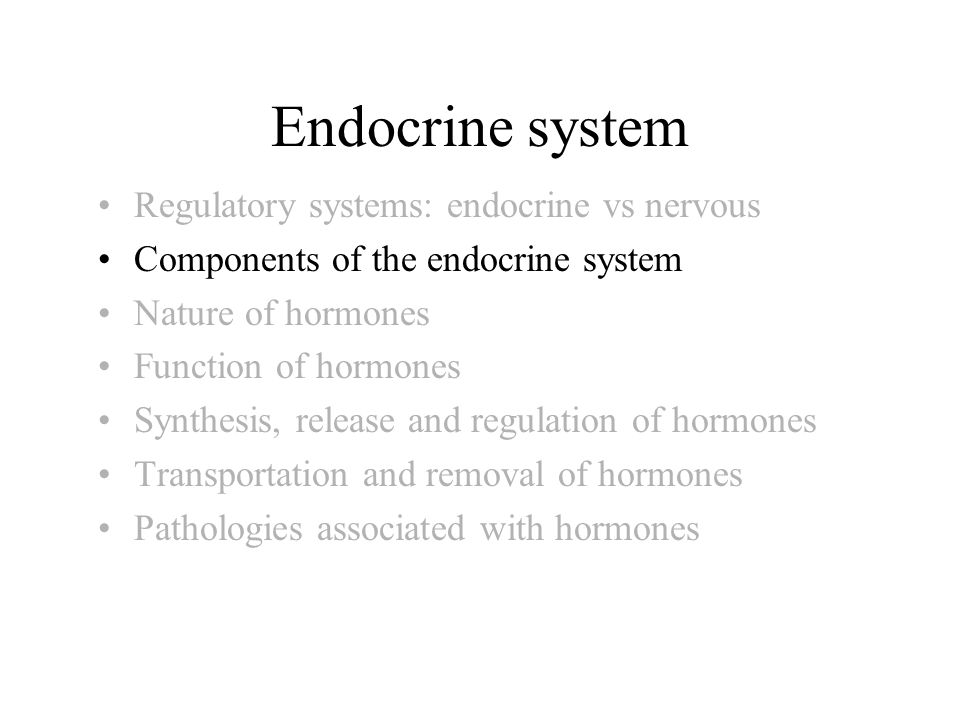 Endocrine system Regulatory systems: endocrine vs nervous