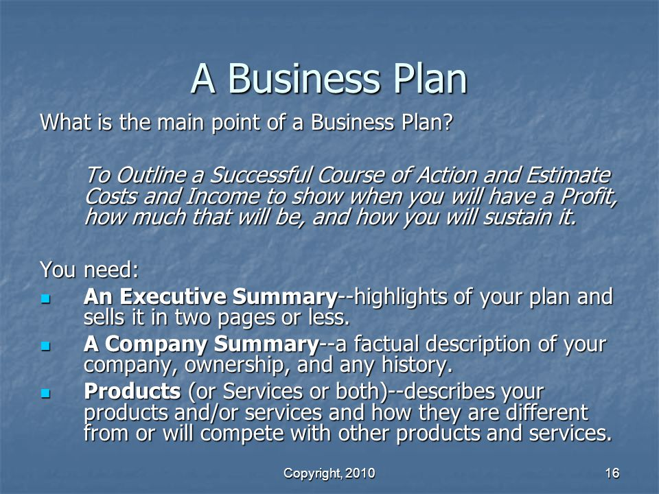 A Business Plan What is the main point of a Business Plan