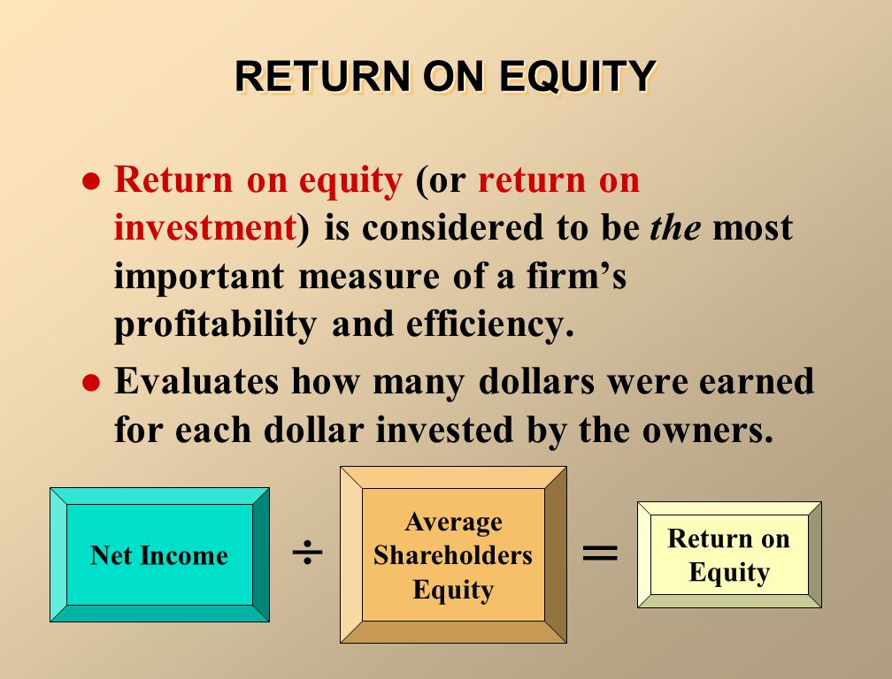 Average Shareholders Equity