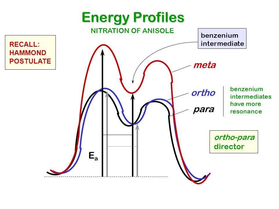Energy Profiles meta ortho para Ea ortho-para director
