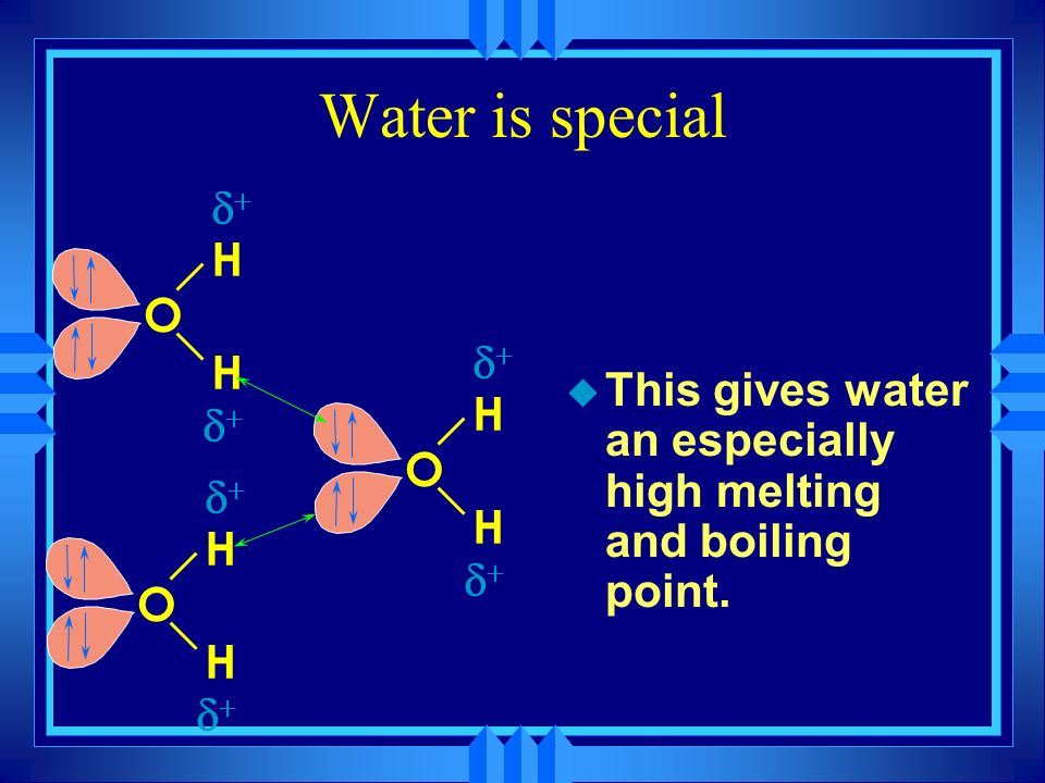 Water is special H O d+ This gives water an especially high melting and boiling point.