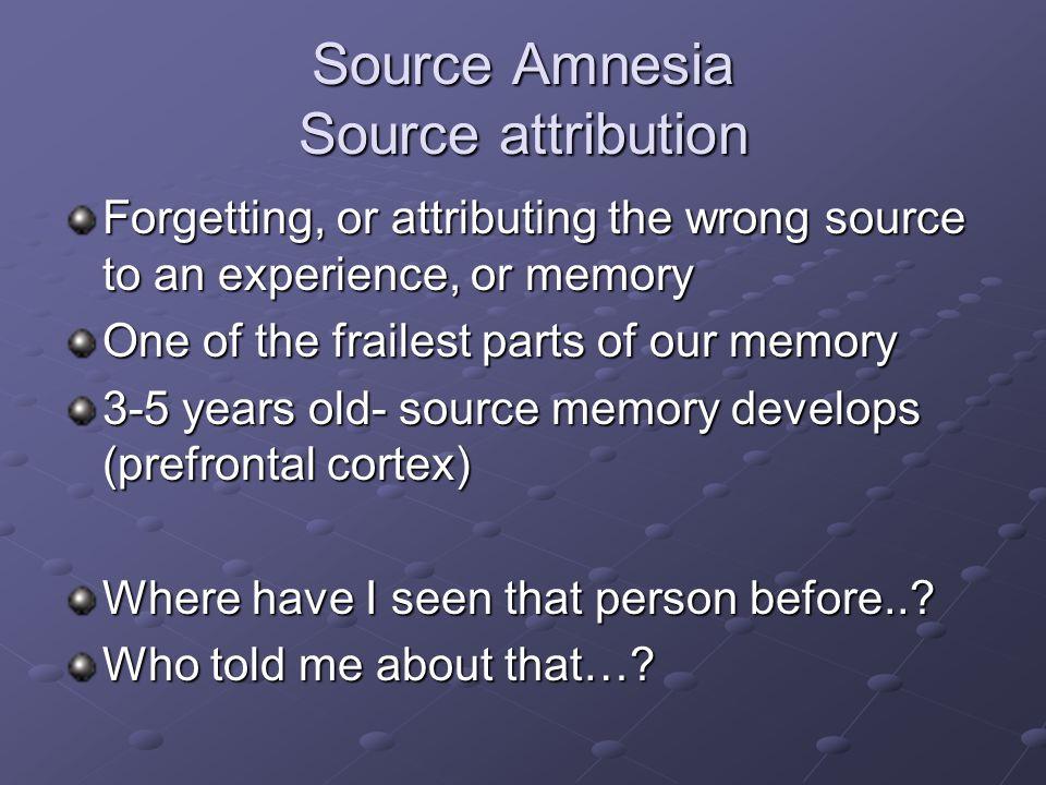 Source Amnesia Source attribution