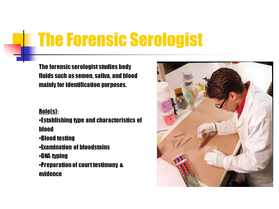 The Forensic Serologist