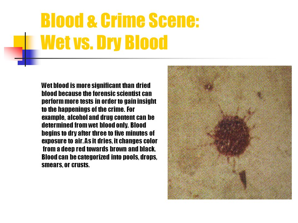 Blood & Crime Scene: Wet vs. Dry Blood