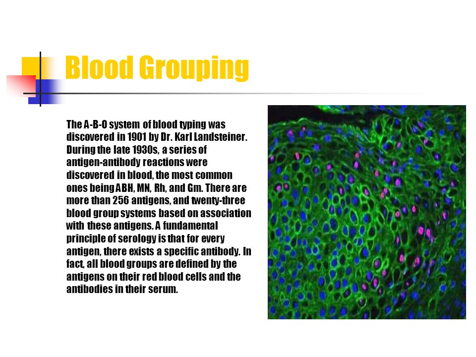 Blood Grouping The A-B-O system of blood typing was