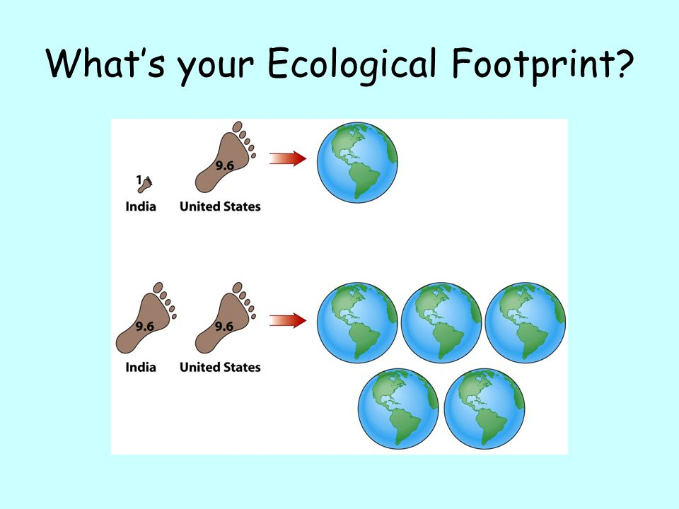 What's your Ecological Footprint