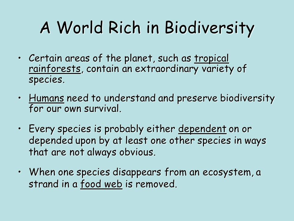 A World Rich in Biodiversity