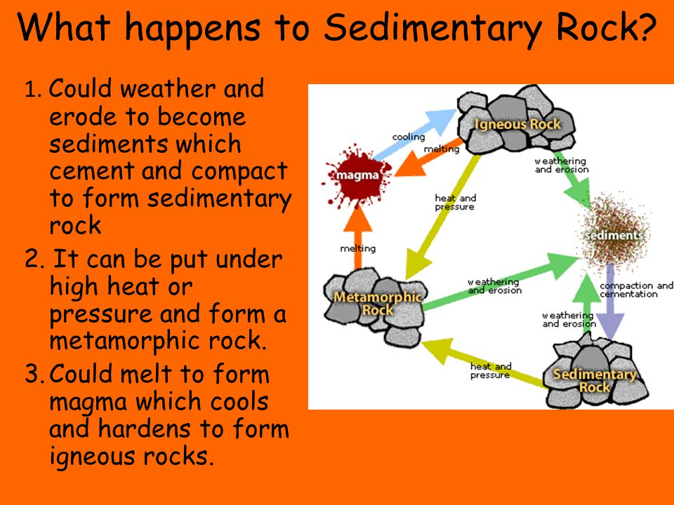 What happens to Sedimentary Rock