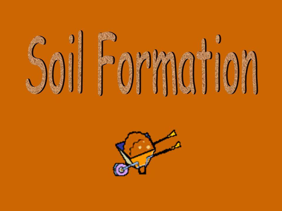 Soil Formation 28