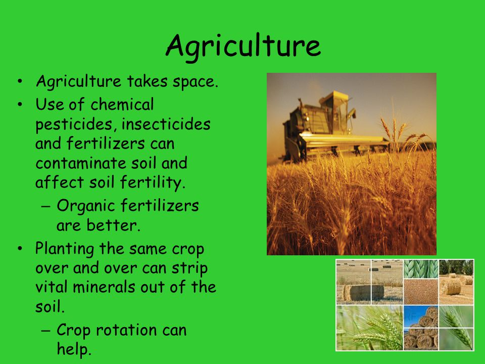 Agriculture Agriculture takes space.