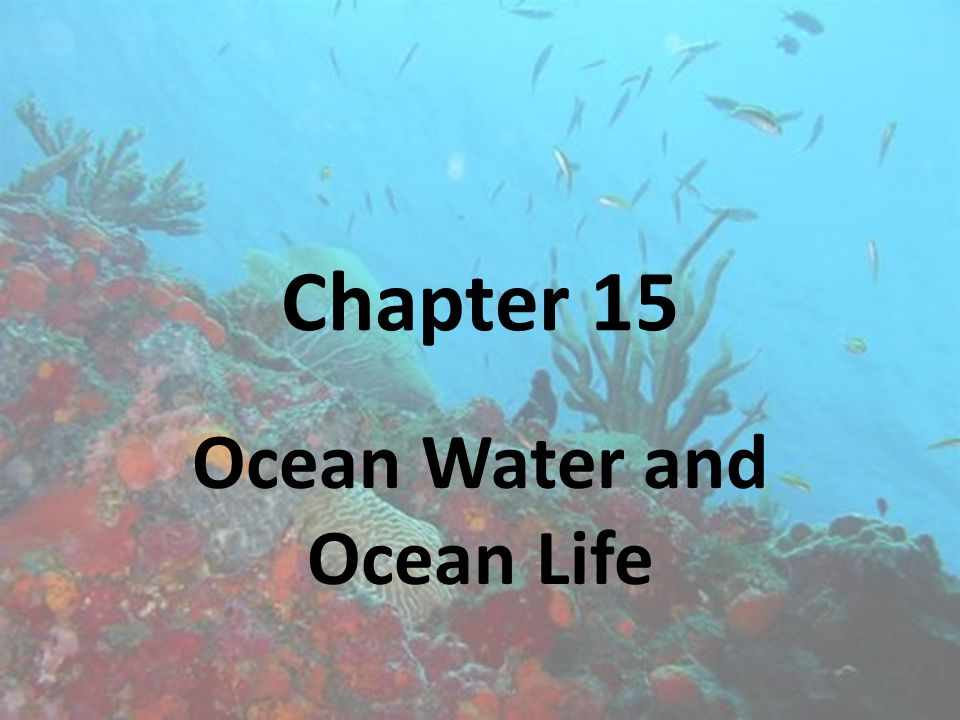 Ocean Water and Ocean Life