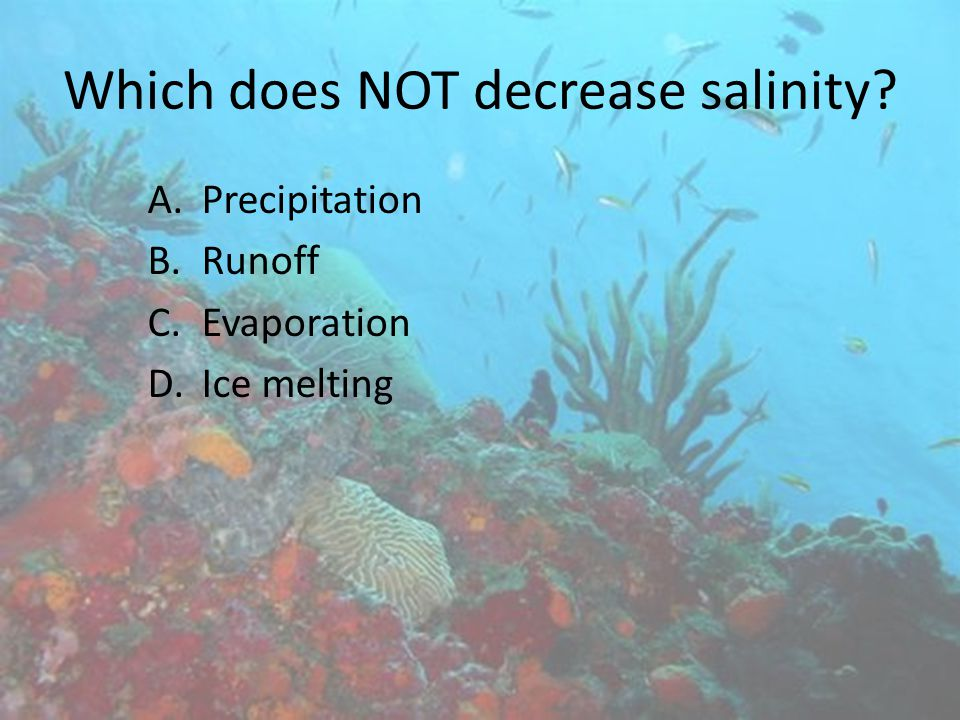 Which does NOT decrease salinity
