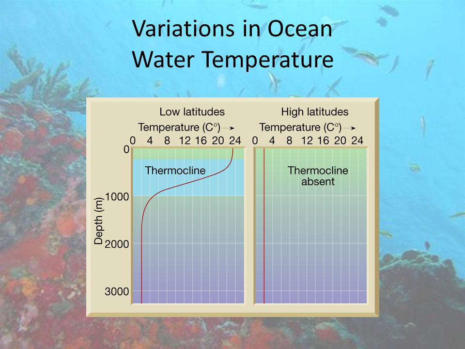 Variations in Ocean Water Temperature