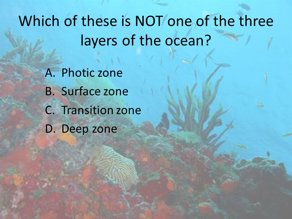 Which of these is NOT one of the three layers of the ocean
