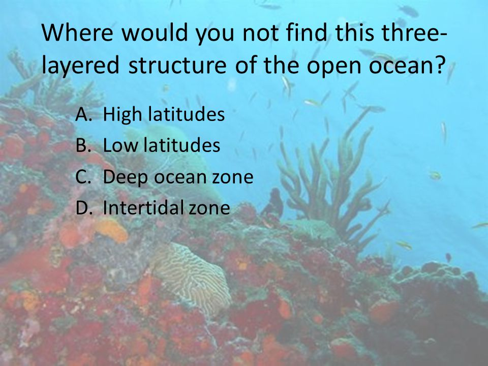 Where would you not find this three-layered structure of the open ocean