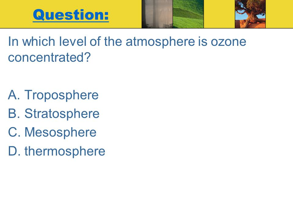 Question: In which level of the atmosphere is ozone concentrated