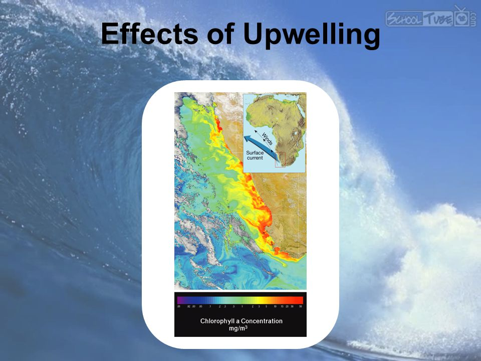 Effects of Upwelling Makes no sense without caption in book