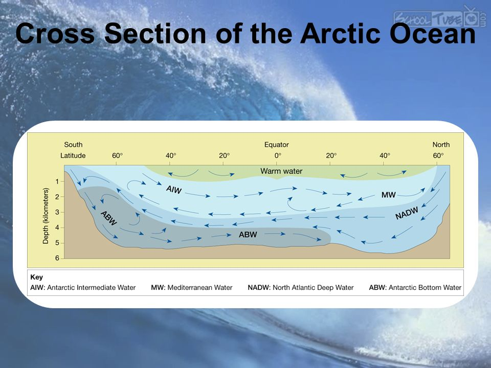 Cross Section of the Arctic Ocean