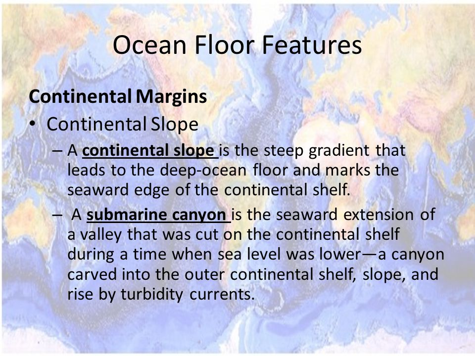 Ocean Floor Features Continental Margins Continental Slope
