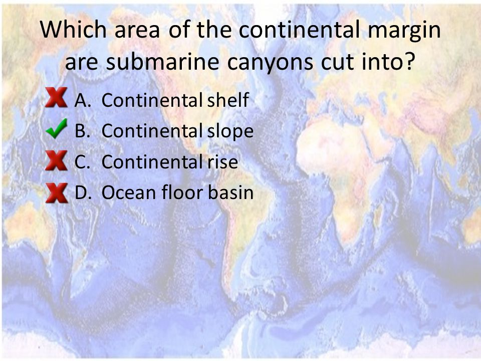 Which area of the continental margin are submarine canyons cut into