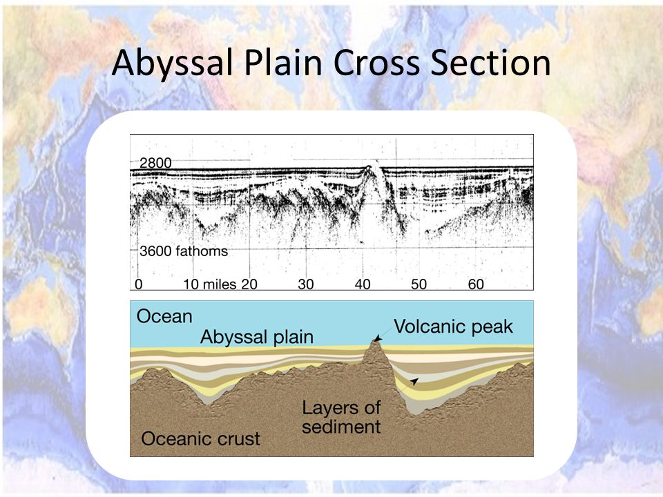 Abyssal Plain Cross Section