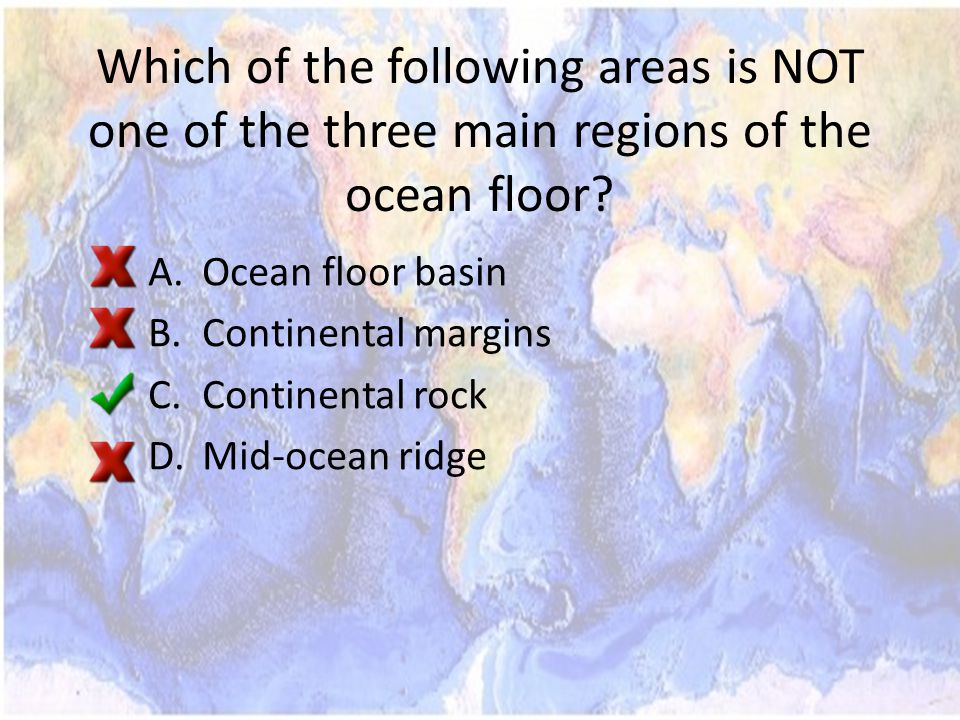 Which of the following areas is NOT one of the three main regions of the ocean floor