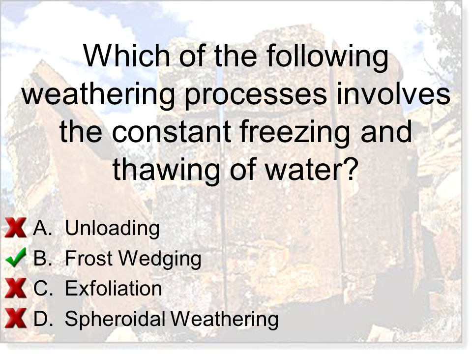 Which of the following weathering processes involves the constant freezing and thawing of water