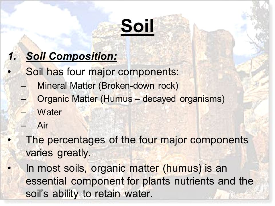 Weathering soil and mass movements ppt download for Four main components of soil