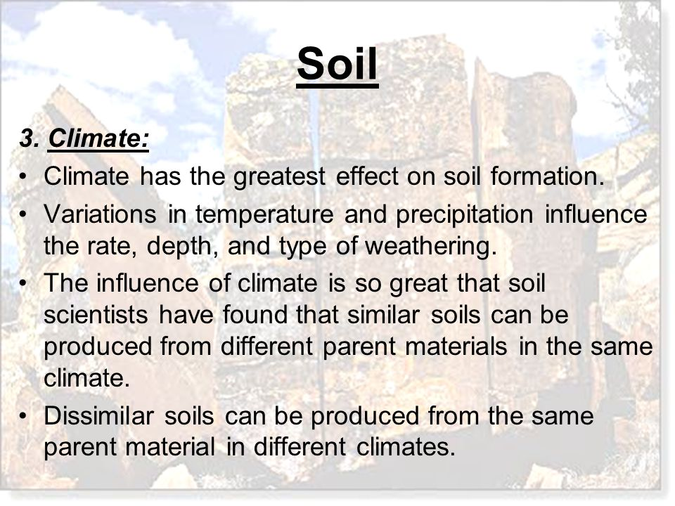 3. Climate: Climate has the greatest effect on soil formation.