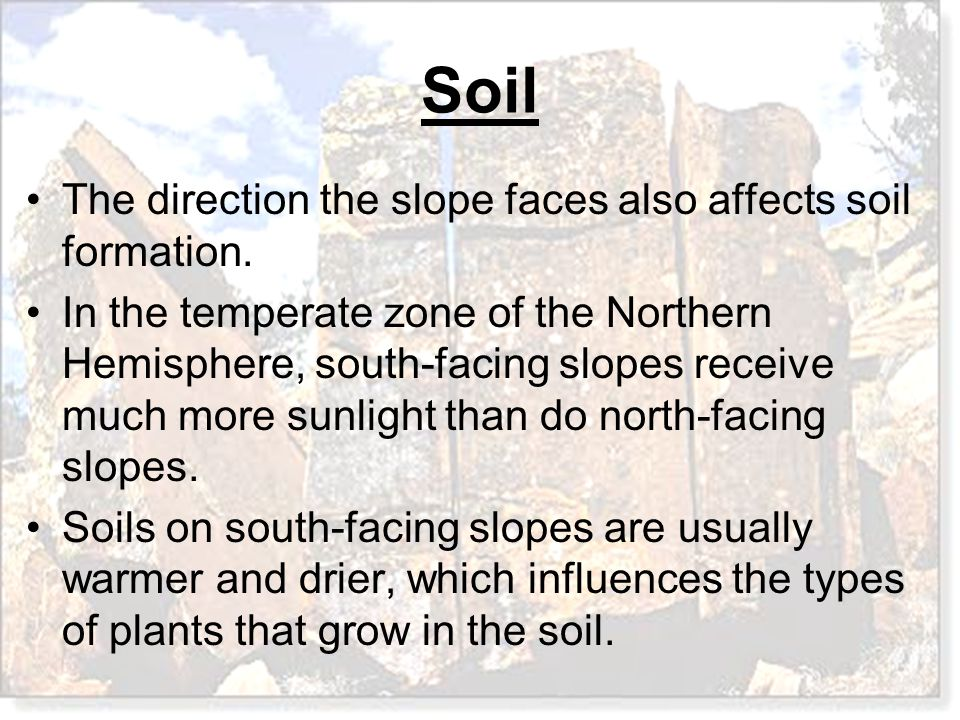 The direction the slope faces also affects soil formation.