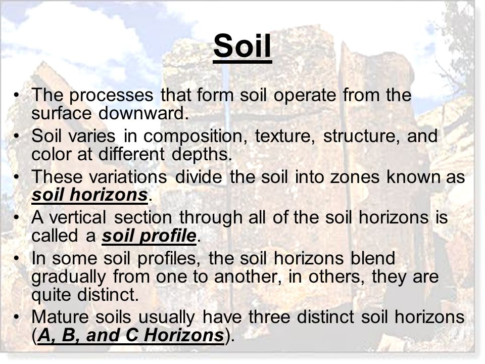 The processes that form soil operate from the surface downward.