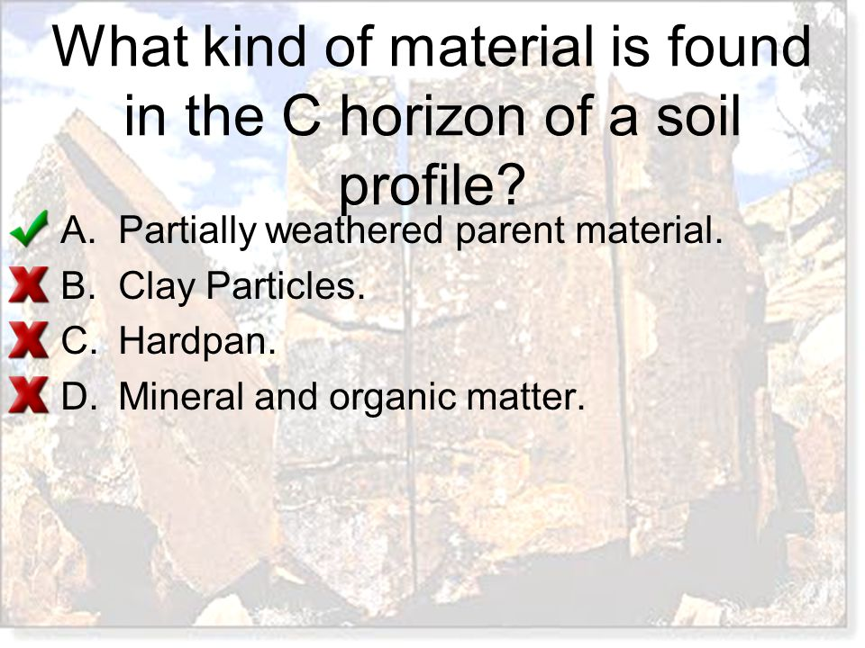 What kind of material is found in the C horizon of a soil profile