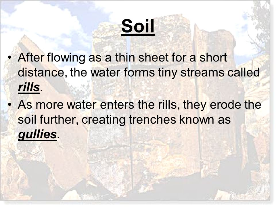 After flowing as a thin sheet for a short distance, the water forms tiny streams called rills.