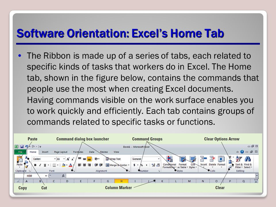 Software Orientation: Excel's Home Tab