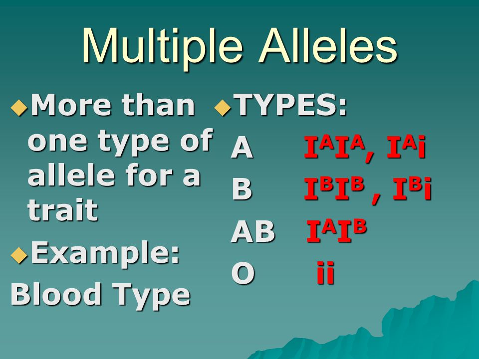 Multiple Alleles More than one type of allele for a trait Example: