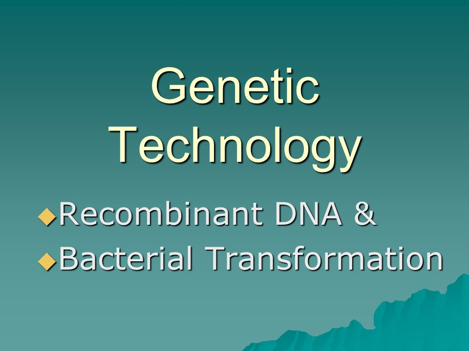 Recombinant DNA & Bacterial Transformation