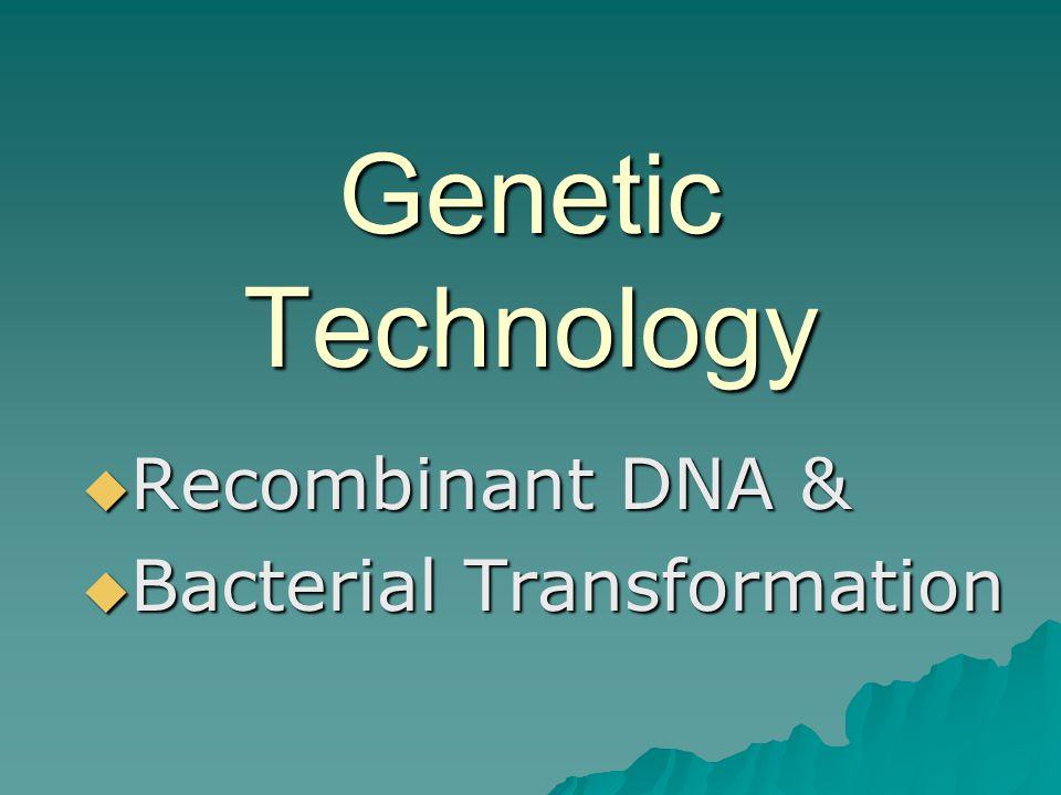Recombinant DNA & Bacterial Transformation