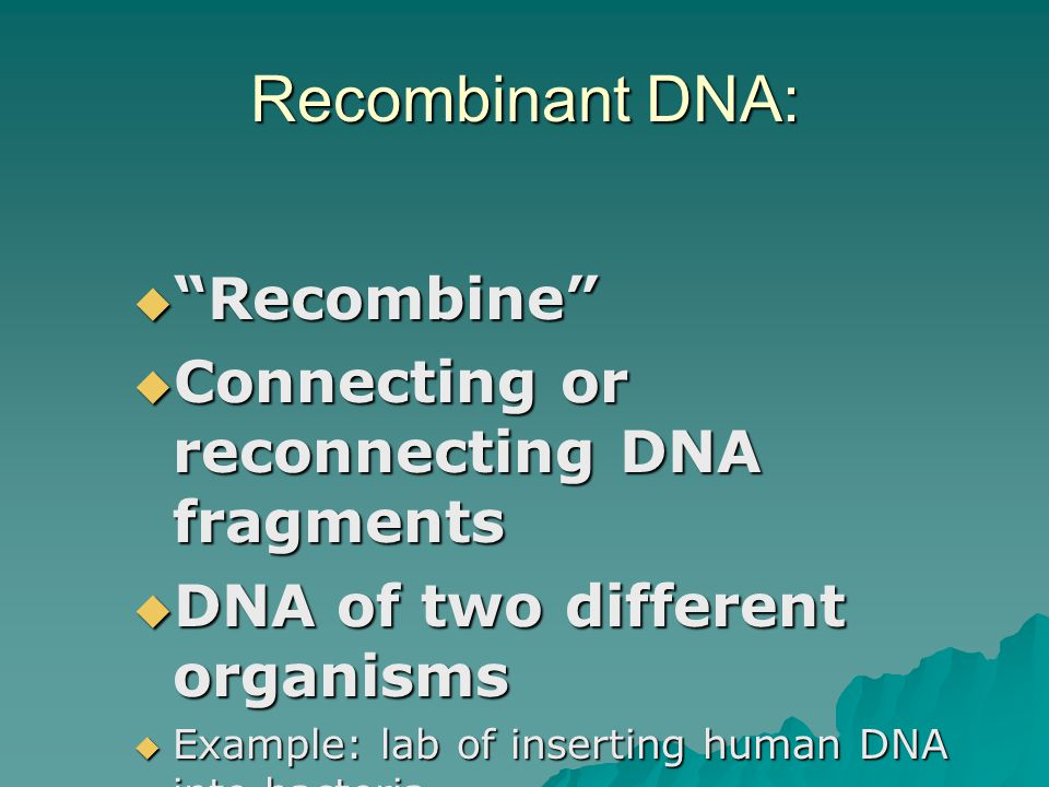 Recombinant DNA: Recombine Connecting or reconnecting DNA fragments