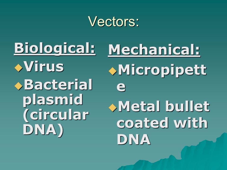 Vectors: Biological: Virus. Bacterial plasmid (circular DNA) Mechanical: Micropipette.